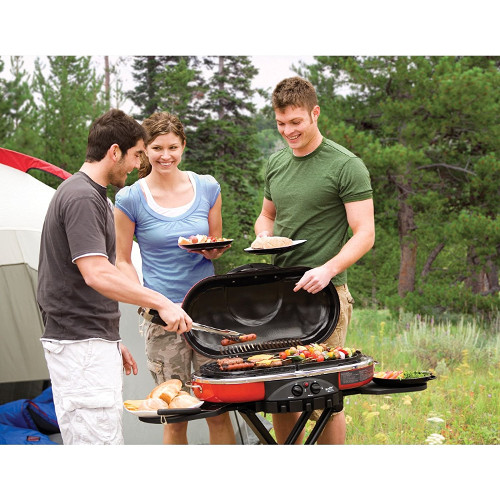 Best Portable Grill for RVing