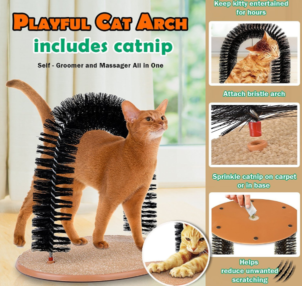 Playful Cat Scratcher
