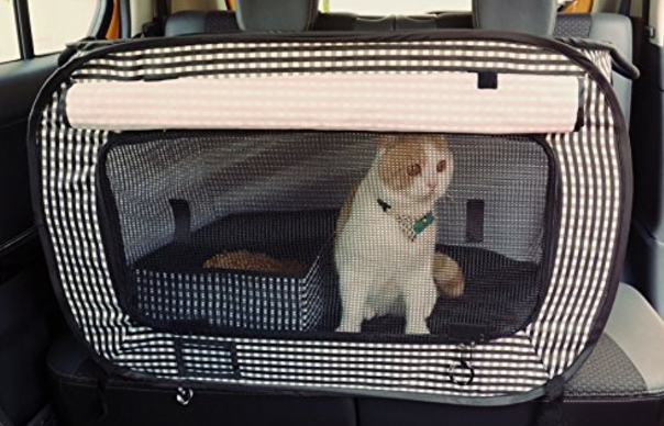 RVing With Pets: What You Need to Know (2018 Edition) | Wandering RV