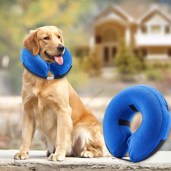 Inflattable Collar for Pets in RV