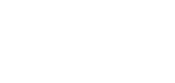The Wandering RV Logo White